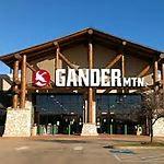 Gander1
